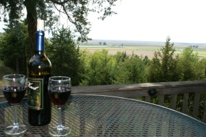 Spirit Knob Winery, Ursa, IL