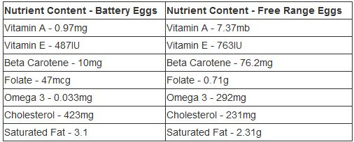 The nutritional comparison showing eggs raised commerically in chicken farms versus those raised in backyards or as free-range chickens.