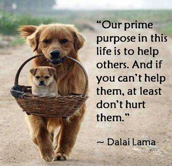 Dalai-Lama-on-Helping-Others1